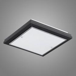 Потолочный светильник Argon 1617 TEQUILA